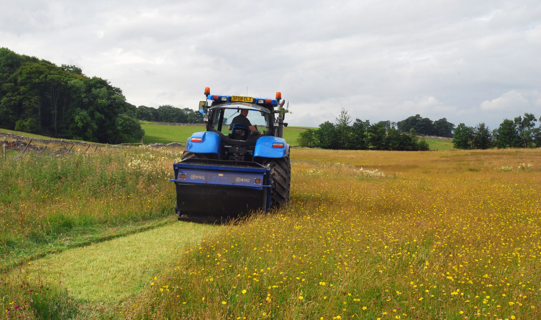 Harvesting green hay from a 'donor' meadow