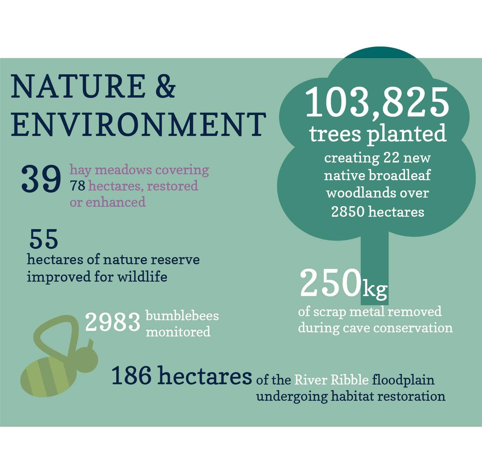 Our impact on nature and the environment in the Yorkshire Dales