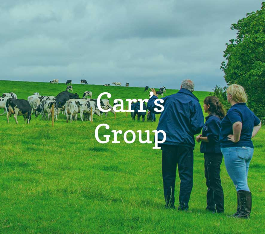 Carr's Group partners of Yorkshire Dales Millennium Trust