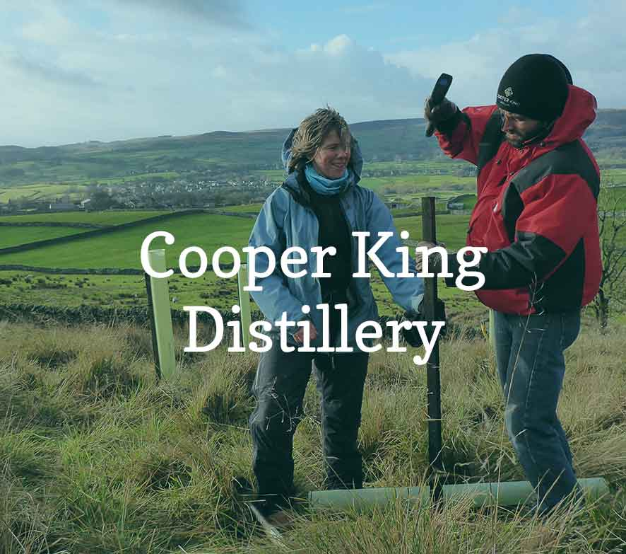 Cooper King Distillery supports new woodlands